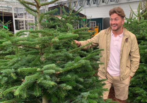 Kerstboom als origineel Kerstgeschenk