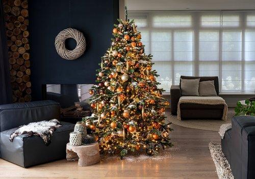 Grote Kerstbomen
