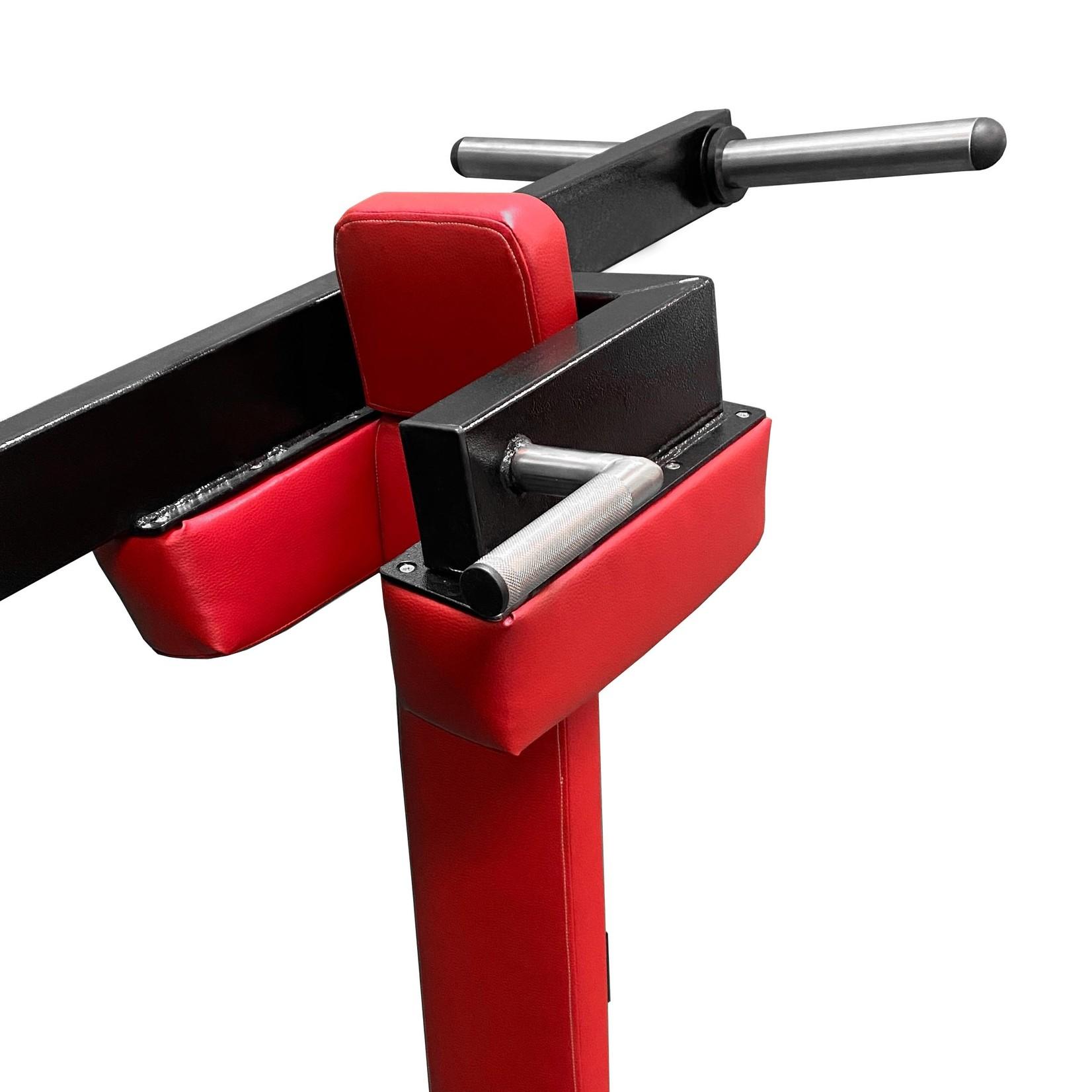 Pendulum Squat Machine 3R