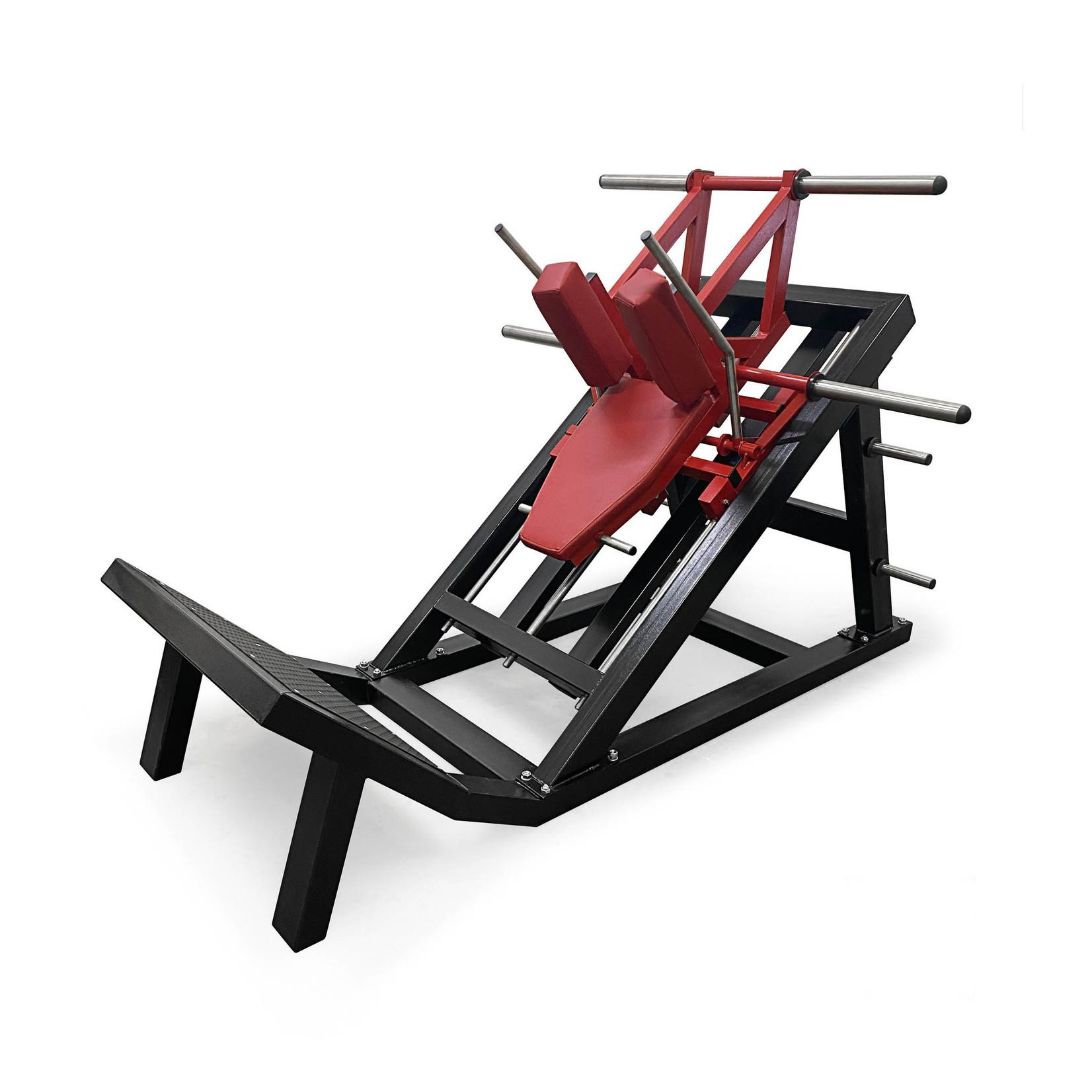 Hack Squat Machine 1D