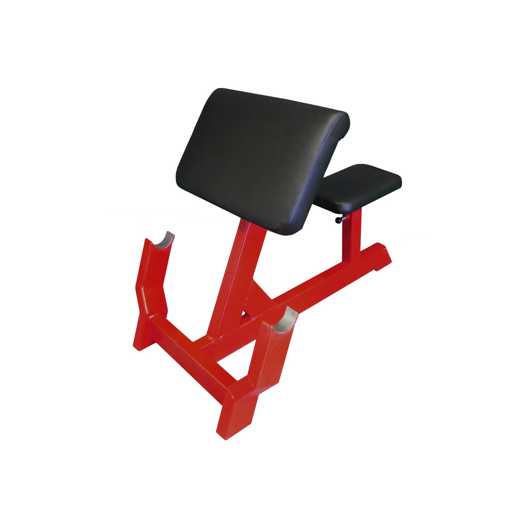 Biceps Curl Bench 1FX