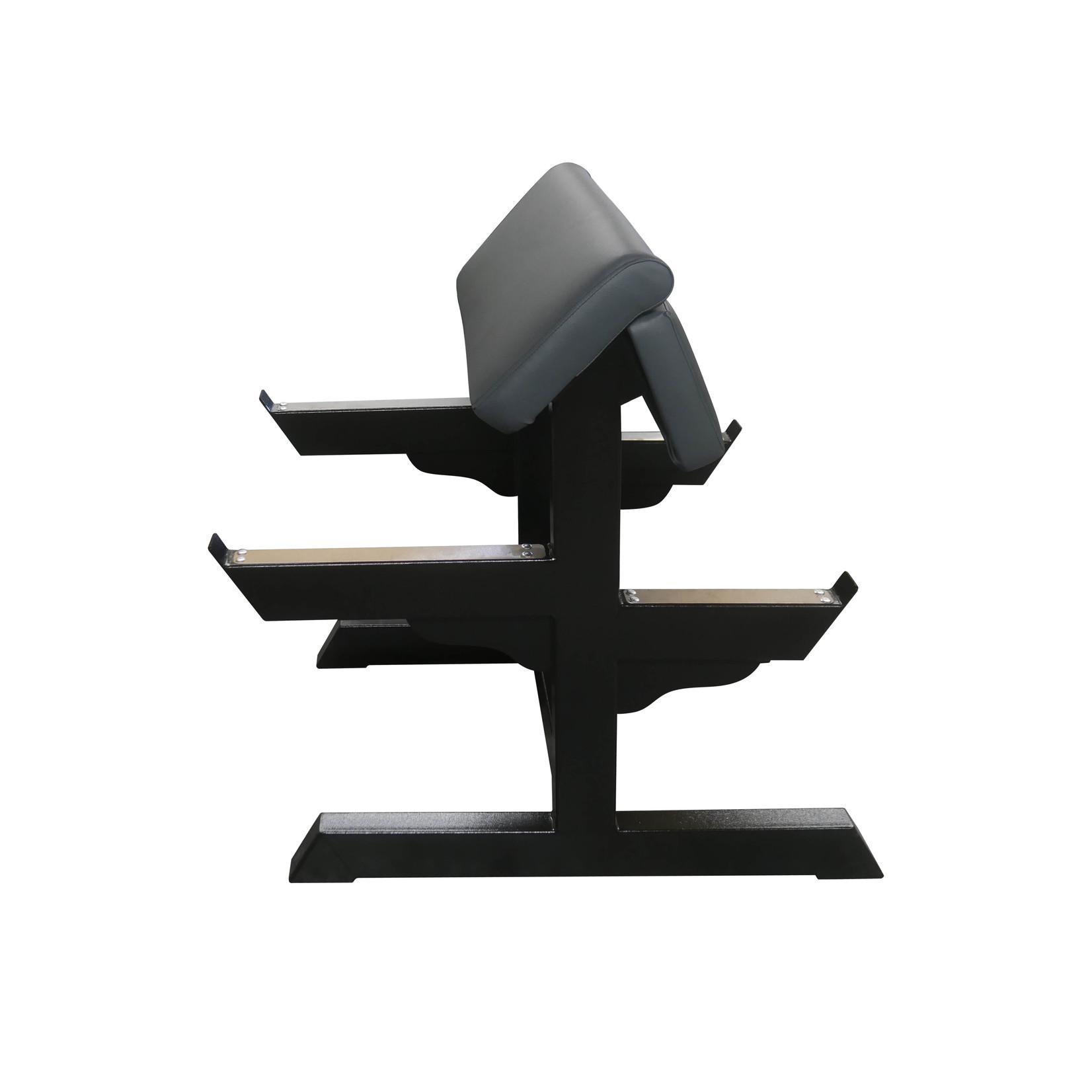 Biceps Curl Bench 2FX