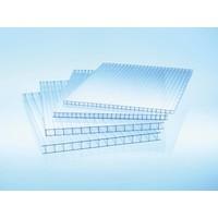 10mm PC Stegplatten - Farblos - WILKULUX®