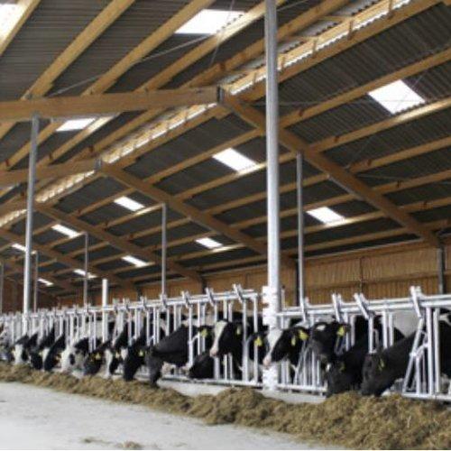 Renolit Ondex® HR Profilplatten – für Industrie & Landwirtschaft