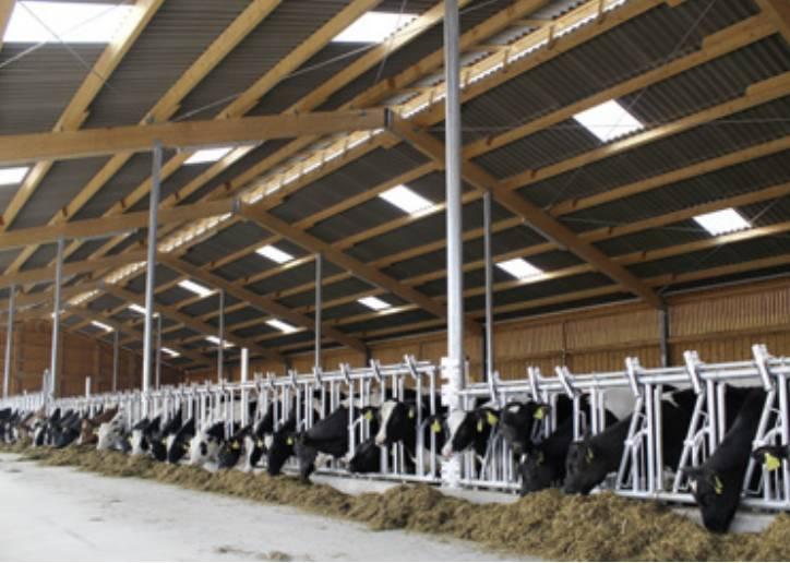 PVC Profilplatten für Industrie & Landwirtschaft – Renolit Ondex HR®