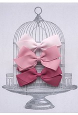 Medium Clip Gift Set Pinks