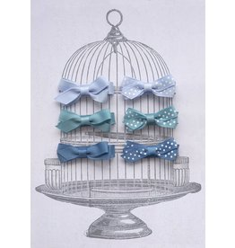 Small Clip Gift Set Blues