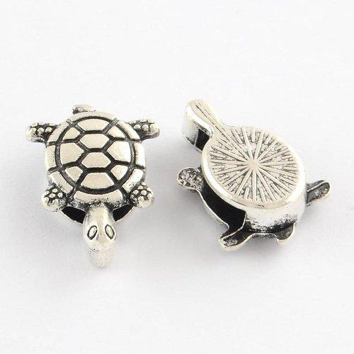 Zilveren Schildpad