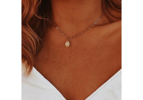 Orelia Cowrie Shell Chain Necklace