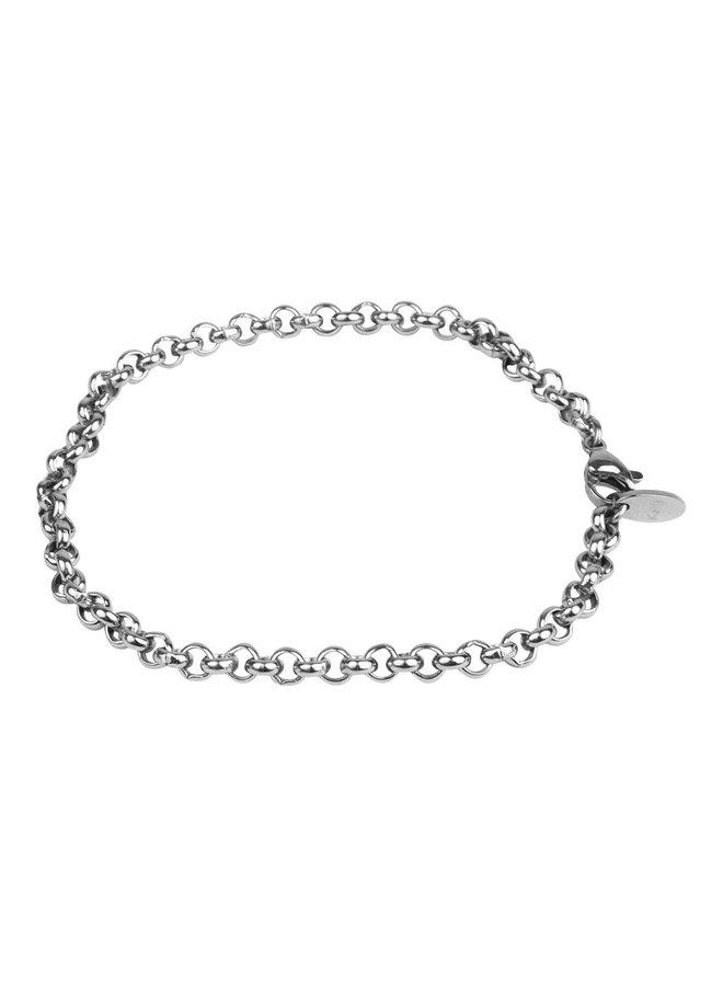 2513 Jasseron - zilver