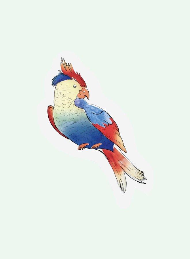 Cut out Cards - Parrot
