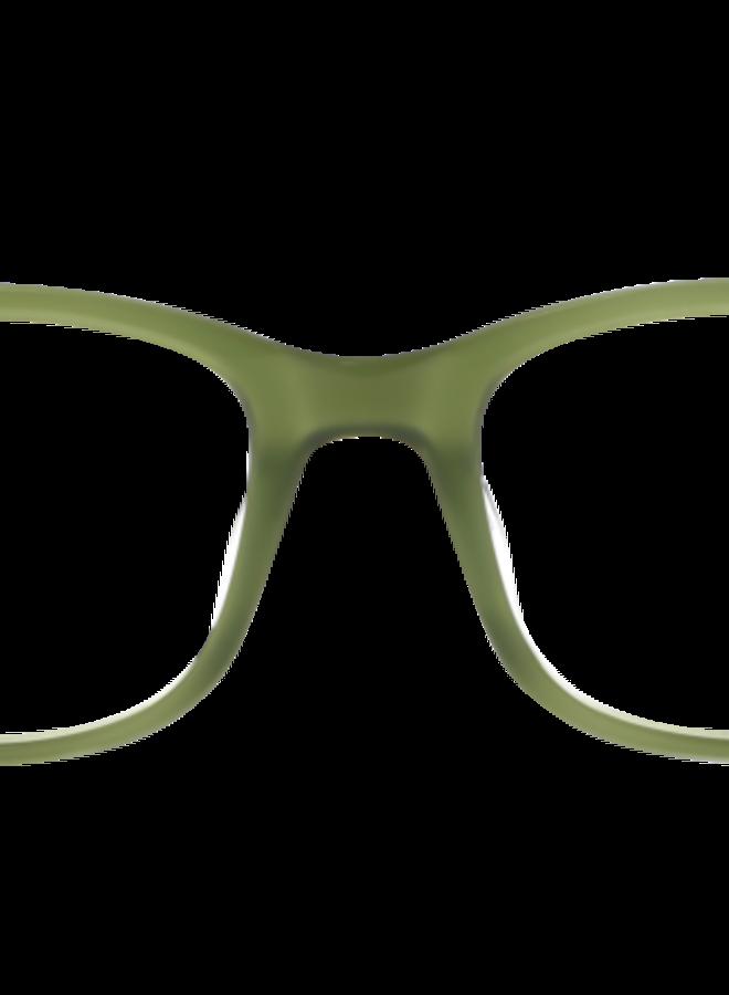 Eyequarium Olivetree
