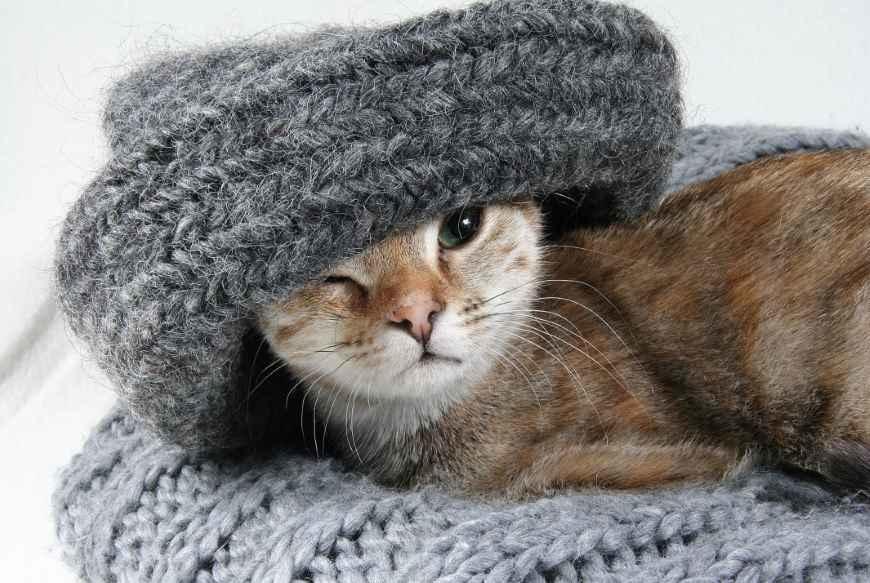 Wollen trui wassen en pluizen verwijderen
