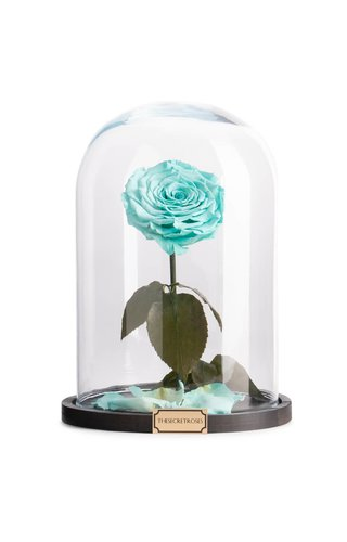 Thesecretroses ROSE IM GLAS turquoise