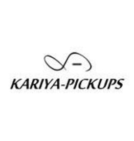 Kariya Pickups XIIH vintage style alnico V  single single humbucker pickup set