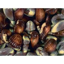 Guylian - zeevruchten doos - 3 kilo