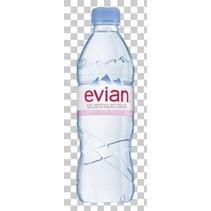 Evian - mineraalwater 50cl pet - 24 flessen