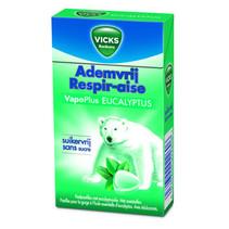 Vicks - ademv eucalyptus sv 40g - 20 box