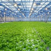 Bescherm uw kasvloer en het milieu