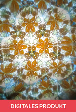 2019 Kaleidoskop
