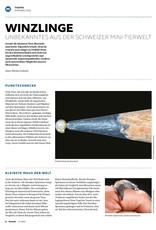 Magazin manuell Ausgabe November 2019 – als PDF
