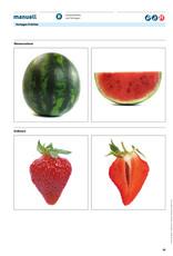 manuell Unterrichtsmaterial Fruchtkissen/Zyklus 2/als digitales Produkt