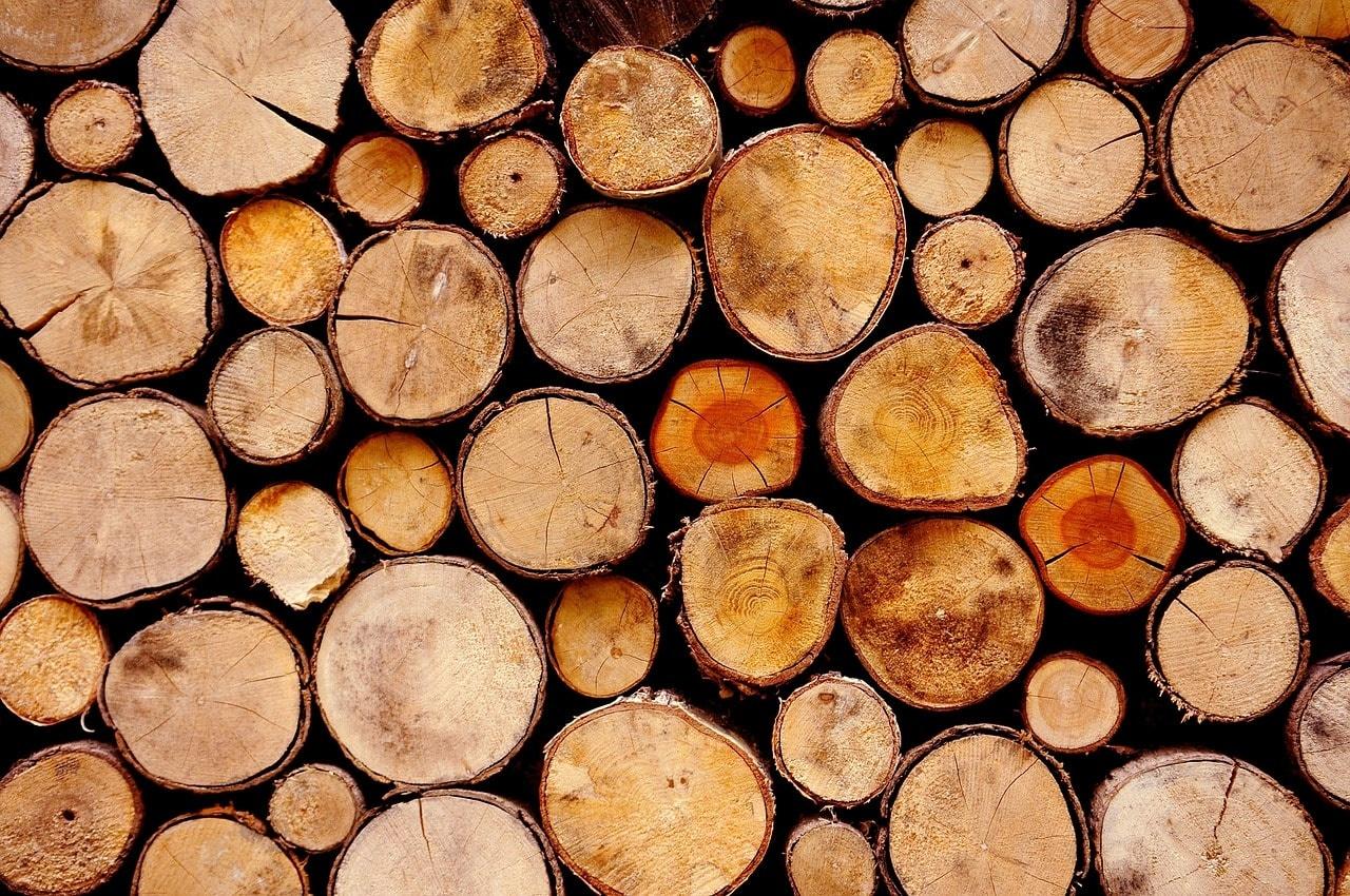 Verschillende soorten hout: wat is wat?