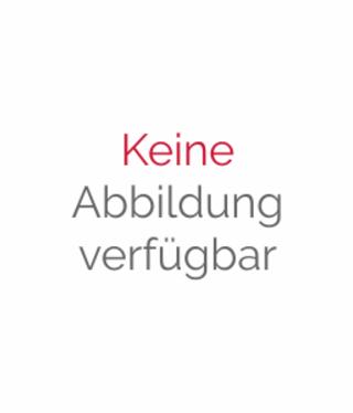 Wellhöfer Öffnungsverkleidung mit Eckverbindungen für topstep (je cm)