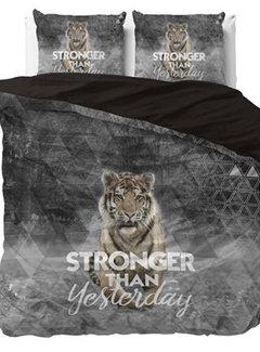 Dreamhouse Bedding Stronger