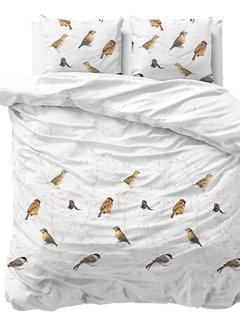 Sleeptime Birdy - Wit