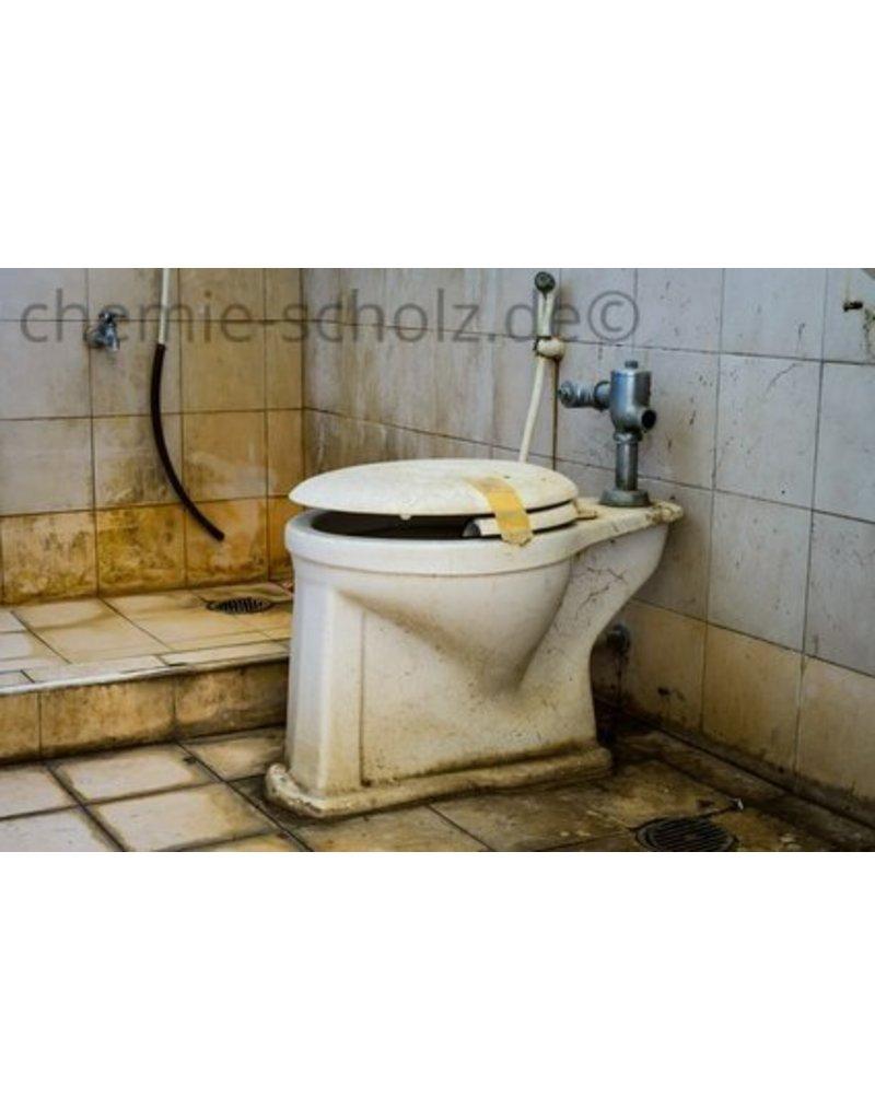 All you can clean Toilettenduftöl Zitrone 10 L incl. Nachfüllflasche