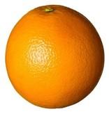 Fatzzo TT Nikotin Reiniger 10 L Orange + 1 leere Sprühflasche + 3 Mikrofasertücher