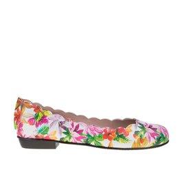 Square Feet D023 Bloem