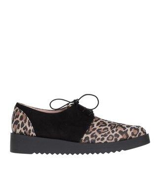 Square Feet dames suède veterschoen met luipaard print
