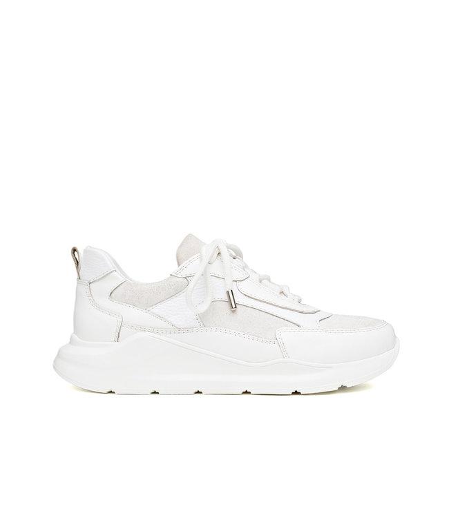 H32 H32 Coco dames sneakers wit leer