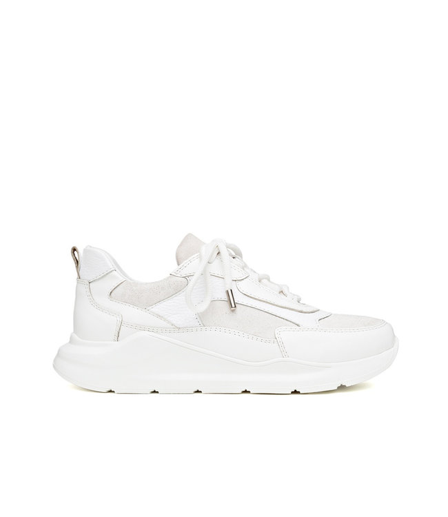 H32 H32 Coco ladies sneakers white leather