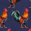 Babypakje Rooster