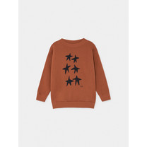 Bobo Choses Stars Sweater Picante