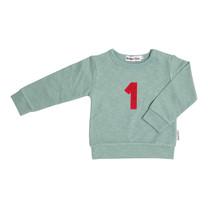 Broer & Zus Baby sweater cactus 1