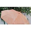 Vissen paraplu orange
