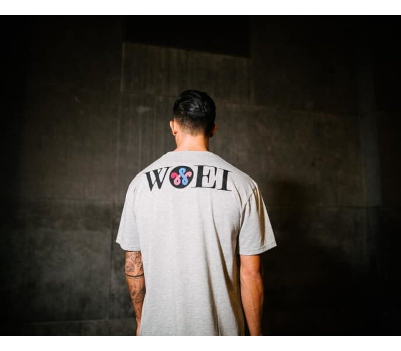 DOOR LOGO GREY