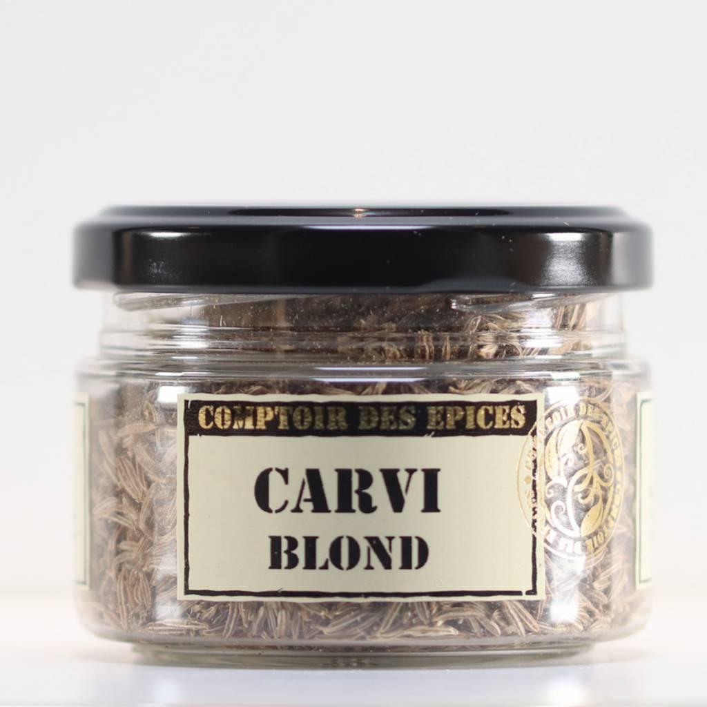 Carum carvi-1