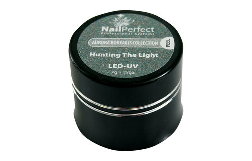 NailPerfect Color Gel LED/UV Hunting The Light 7g