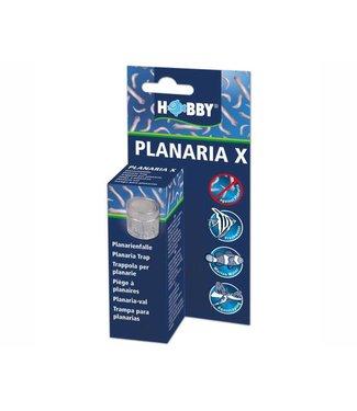 HOBBY PLANARIA X VAL