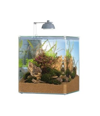 EHEIM NANO-AQUARIUMSET STYLE 35 LTR INC. FILTER EN LED VERL