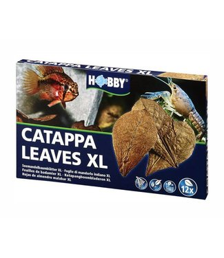 HOBBY NANO CATAPPA LEAVES XL 12 ST