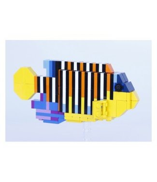 TMC LEGO S3 MODEL:15 REGAL ANGELFISH