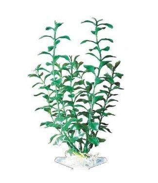 PENN PLAX PLANT GROEN