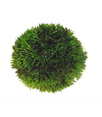 HOBBY DECORATIE AQUA PLANT BALL