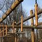 Set kurze Stöcke - Hartholz